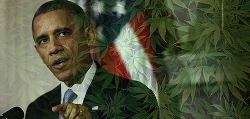 Barrack Obama Przewiduje, że Więcej Stanów Zalegalizuje Marihuanę, Dutch Seeds