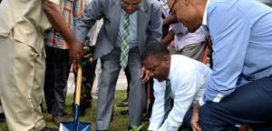 Jamajka sadzi pierwszą legalną roślinę konopi indyjskich, Dutch Seeds