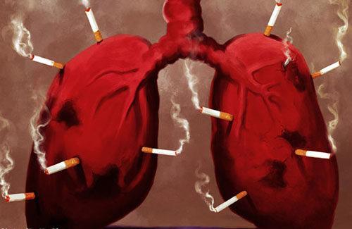 Marihuana Blokuje Rakotwórczy Enzym u Palaczy Papierosów, Dutch Seeds