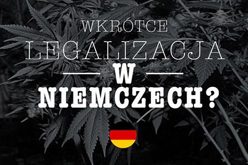 Niemieccy Pacjenci Będą Leczyli się Sami Medyczną Marihuaną, Dutch Seeds