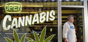 Pierwszy Cannabis Bank powstanie w Kolorado, Dutch Seeds