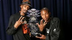 Snoop Dogg i Pharell Łączą Siły w Reklamie Marihuany!, Dutch Seeds