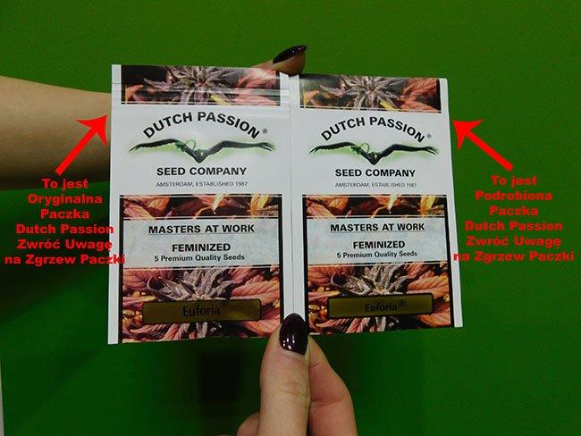Kupuj Tylko Oryginalne Nasiona Dutch Passion, Dutch Seeds