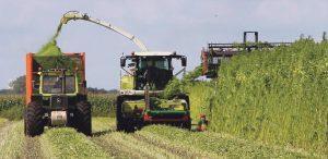 trawka-traktor-kombajn-koszenie-pole-rolnictwo-uprawa-1