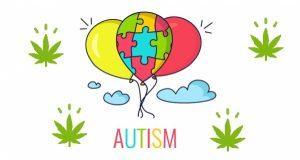 Czy kanabisem można leczyć autyzm?, Dutch Seeds
