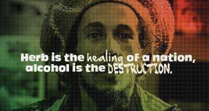 kannabis-to-zdrowie-alkohol-to-destruckja-1