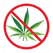 marihuana-zakaz-przestepstwo-1