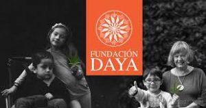 Fundacja Daya i pierwsza legalna uprawa konopi medycznej w Chile, Dutch Seeds