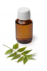 Olej z miodli indyjskiej (olej neem) dla zdrowego wzrostu roślin, Dutch Seeds