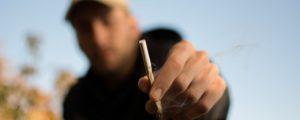 Czy palenie trawki doprowadza do bezrobocia?, Dutch Seeds