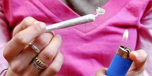 Nadmierne spożywanie cannabisu szkodzi kościom, Dutch Seeds