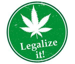 Konsumenci cannabisu są bardziej społeczni i więcej zarabiają, Dutch Seeds