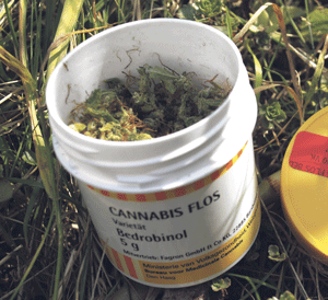 Luksemburg legalizuje medyczną marihuanę, Dutch Seeds