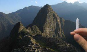 Peru legalizuje medyczną marihuanę, Dutch Seeds
