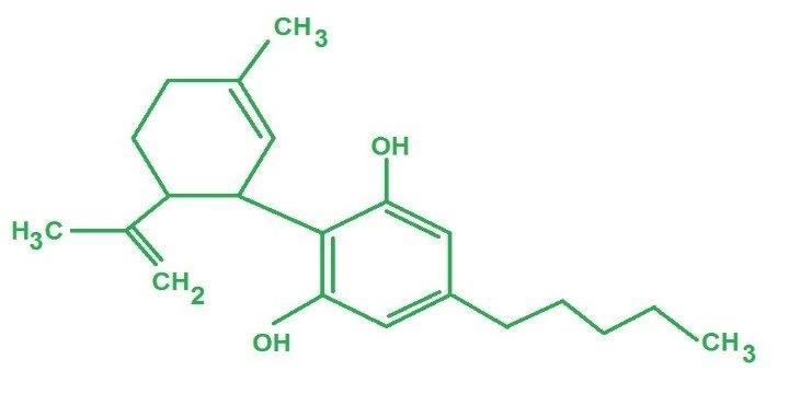 CBD Wspomaga Działanie Antybiotyków, Dutch Seeds