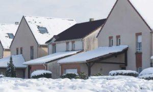 Brak śniegu na dachu zdradził plantację marihuany wartą 90.000 euro, Dutch Seeds
