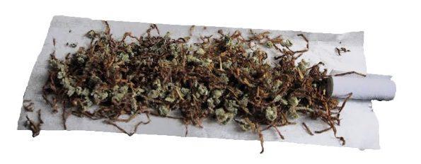 Palenie Marihuany a Koronawirus, Dutch Seeds