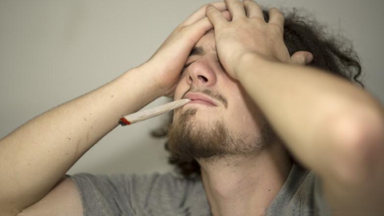 Izolacja Podczas Pandemii Koronawirusa Może Zachęcać Do Spożywania Marihuany, Dutch Seeds