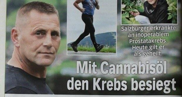 Wyleczył Raka Cannabisem i Trafił Przed Sąd, Dutch Seeds