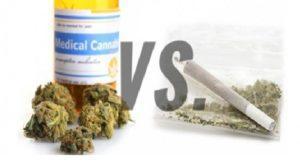 Cannabis do celów rekreacyjnych bądź jako lek: czym się różnią?, Dutch Seeds