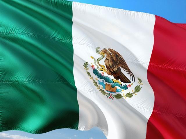 Meksyk Odracza Legalizację Konopi Indyjskich, Dutch Seeds