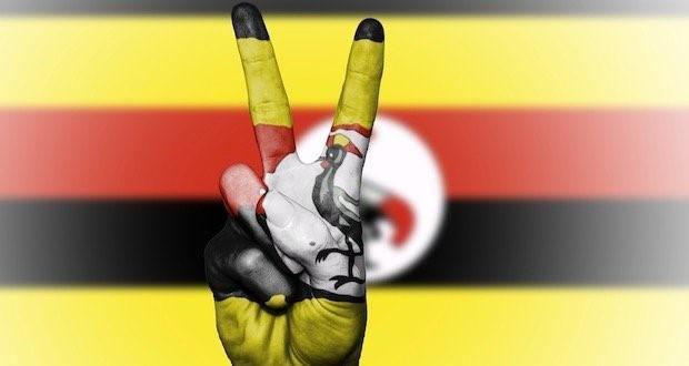 Uganda Planuje Eksport Medycznej Marihuany do Europy, Dutch Seeds