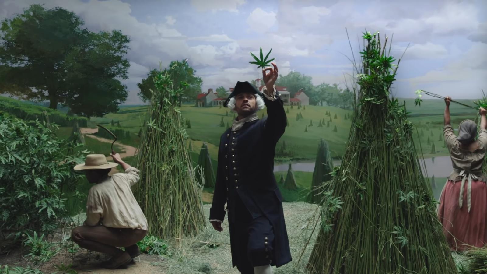 W amerykańskiej telewizji leci reklama cannabisu, Dutch Seeds